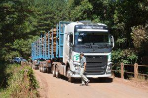 Bitrenes: a través de un decreto se oficializaron los corredores provinciales