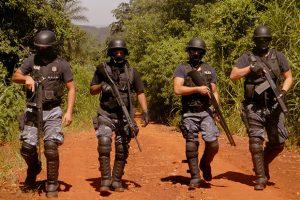 Misiones tendrá una policía ambiental para combatir robos en chacras