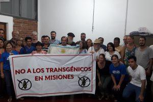 Polémica en la chacra: productores piden ley que preserve y promocione el uso de las semillas misioneras