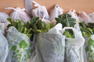La cooperativa Mercado Concentrador proveerá de frutas y verduras a los centros de PAMI en Posadas