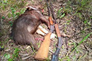 Dos detenidos por caza furtiva en Parque Esperanza