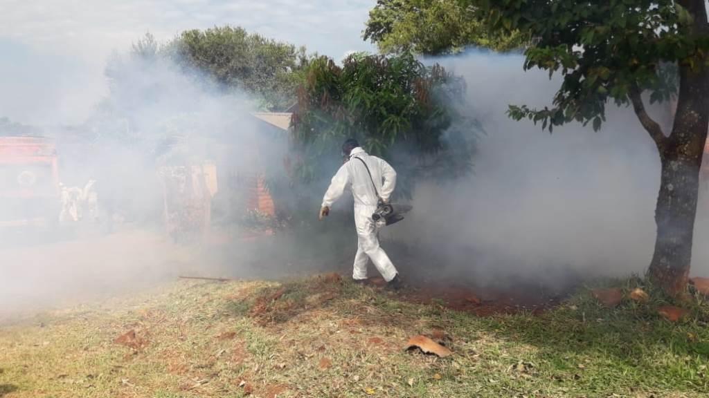 La Provincia avanza con operativos y acciones contra el dengue