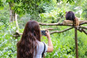 Verano 2020: el turismo dejó más de mil quinientos millones de pesos en Misiones