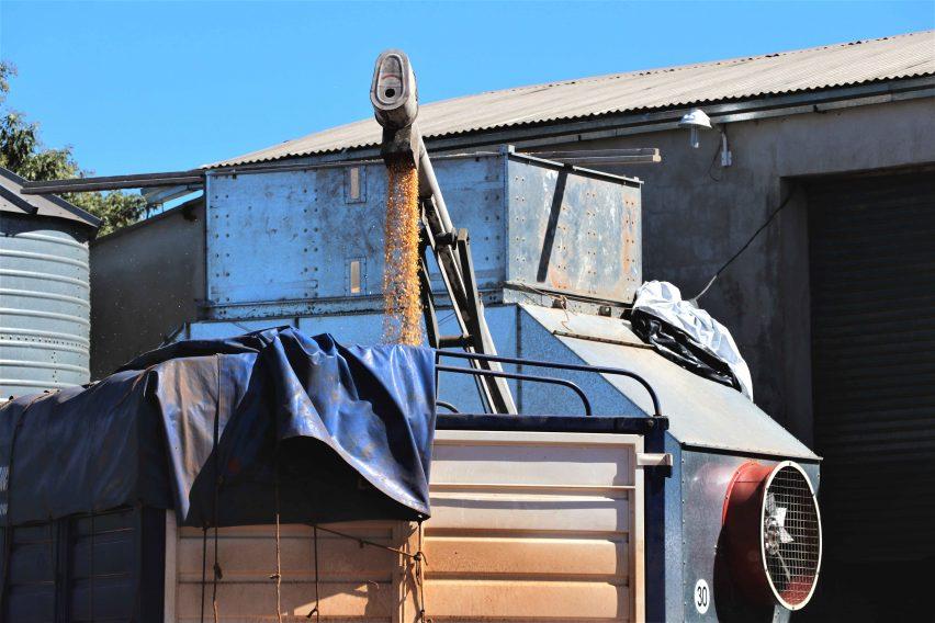 San Pedro: Cooperativa construyó una planta automatizada de almacenaje de maíz
