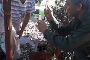 En tres meses, la campaña preventiva contra el dengue llegó a los barrios posadeños, organismos y espacios públicos