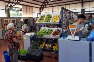 El IFAI supervisó tareas de prevención en el Mercado Concentrador Zonal de Oberá