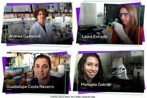 Científicas argentinas lograron ver por primera vez el recorrido de una proteína del dengue en células vivas