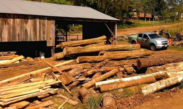 La crisis del sector maderero genera despidos en el Alto Paraná misionero