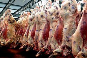 Leve ascenso de la faena bovina en marzo, con una disminución de la participación de hembras