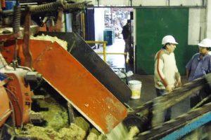 Misiones, a través del Ingenio Azucarero, integra el Centro Azucarero Argentino