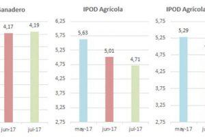 Brecha de precios de los productos agropecuarios: bajó a 4,61 veces en julio