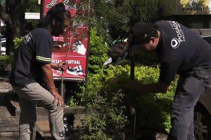 """Posadas: La Municipalidad dio inicio al programa """"10.000 árboles"""""""
