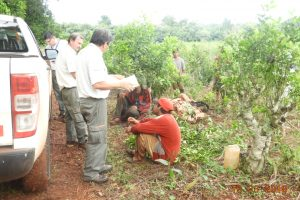 Inspectores detectaron trasporte ilegal de tareferos en Andresito