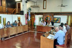 Oberá: aprobaron la reglamentación del estacionamiento para discapacitados