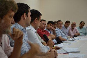La Mesa Nacional Tealera se reunió en Oberá con funcionarios nacionales
