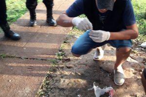 Narcomenudeo: en Posadas y Eldorado la Policía secuestró marihuana