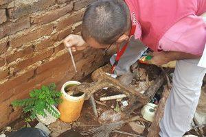 Dengue: se inspeccionaron más de 2500 hogares en Posadas