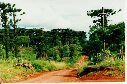 San Pedro: regularización de tierras en Colonia Nueva Esperanza