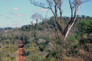 Alerta por un proyecto de Nación para expropiar tierras en provincias