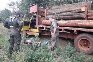 Detienen un camión con madera nativa en Colonia Alberdi
