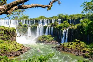 Argentina y Sudáfrica trabajan por los Parques Nacionales