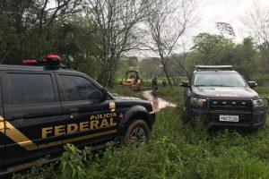 Fuerzas argentinas y brasileñas articulan operativos transfronterizos para evitar delitos ambientales