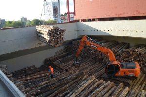 Argentina despachó el segundo embarque de pino a China