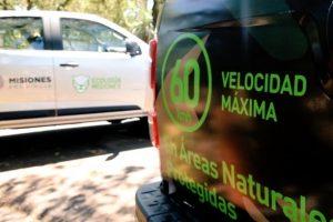 Es oficial el Registro de Conductores Infractores a la Fauna Nativa
