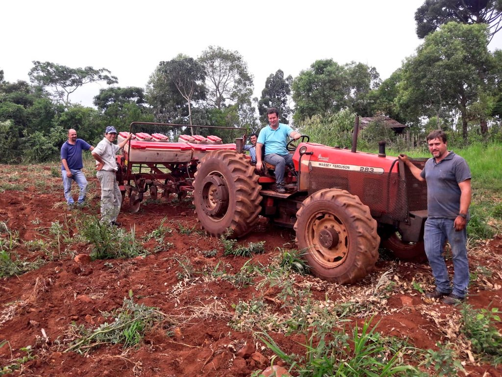 Polémica en la chacra: Nación proyecta sembrar 250 mil hectáreas de maíz transgénico en Misiones