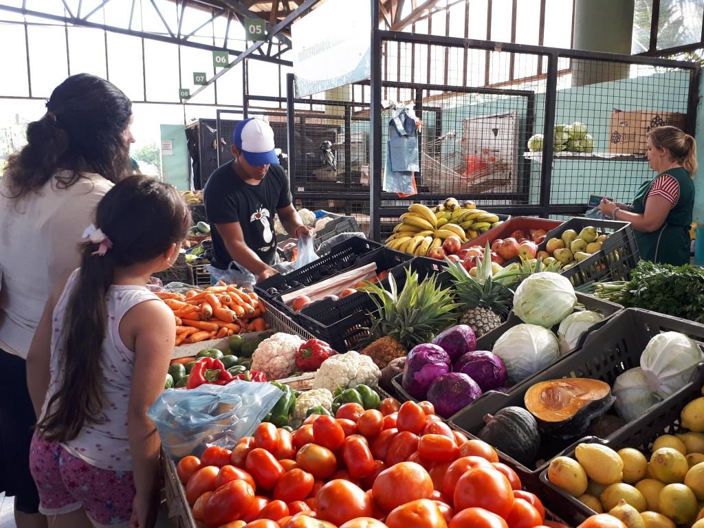 Promociones en el Mercado Concentrador Zonal de Posadas hasta agotarstock