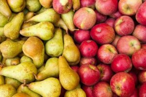 La Argentina trabaja para levantar suspensión de las exportaciones deperas y manzanas a Brasil