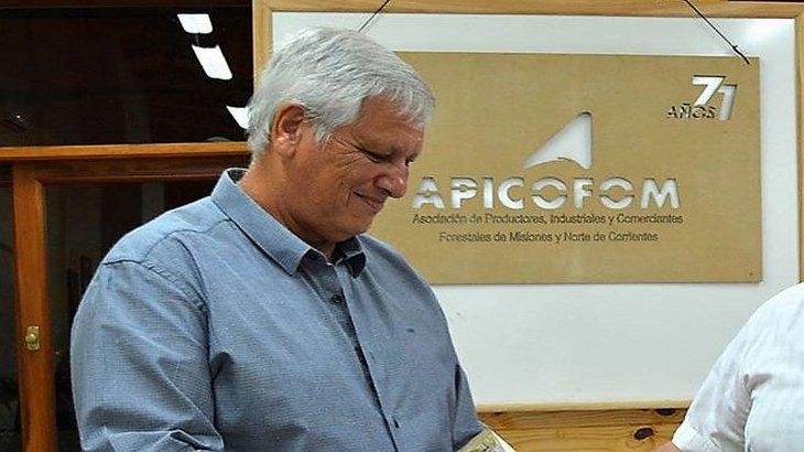 Lavagna propuso un fondo de desempleo idéntico al que impulsa la industria maderera misionera