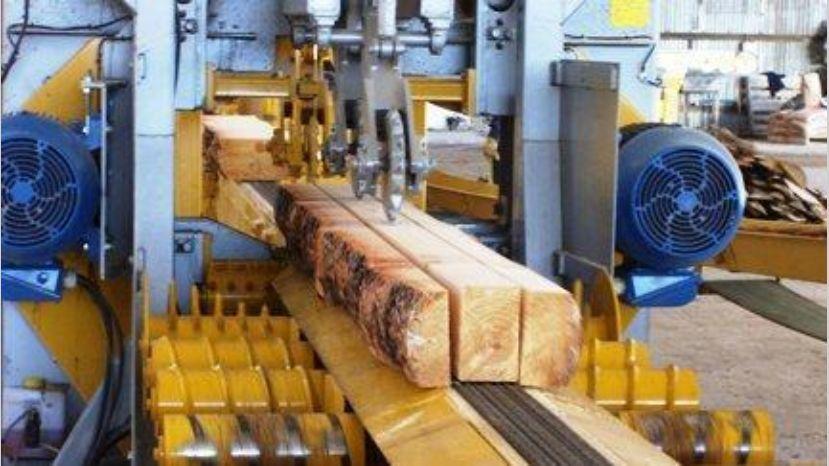 La industria forestal advierte sobre una parálisis y suspensión de trabajadores por la regulación del precio de la materia prima