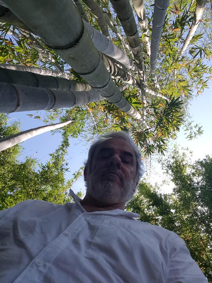 El Señor Bambú