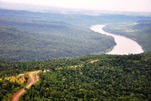 Passalacqua destacó la adhesión de Misiones a la declaración de Nueva York sobre los bosques, impulsada por Naciones Unidas