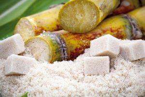 La Provincia y productores cañeros acordaron precio de la caña de azúcar e inicio de la zafra