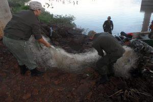 Detectan pesca ilegal en la reserva Urutaú de la EBY