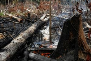 """El incendio en el Amazonas fue calificado como una """"catástrofe continental"""" con """"impacto mundial"""""""
