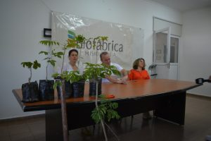 """La Biofábrica propone mejorar el """"arbolado urbano"""" regalando 50 mil árboles nativos"""