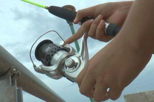 Habrá veda de pesca del 4 de noviembre al 20 de diciembre en el río Paraná