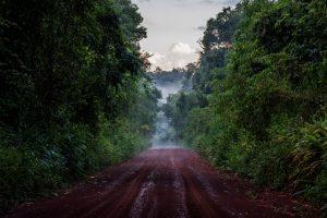 Misiones será sede del VII Congreso Nacional de Conservación de la Biodiversidad