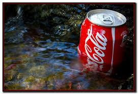 """Coca-Cola """"imita""""a Misiones y valoriza económicamente cada vez más el uso del agua"""