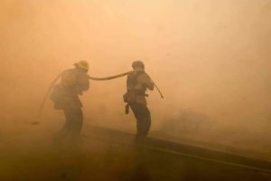 Ecología multó con 363 mil pesos a infractor que inició incendio en las 2000 hectáreas de Puerto Iguazú