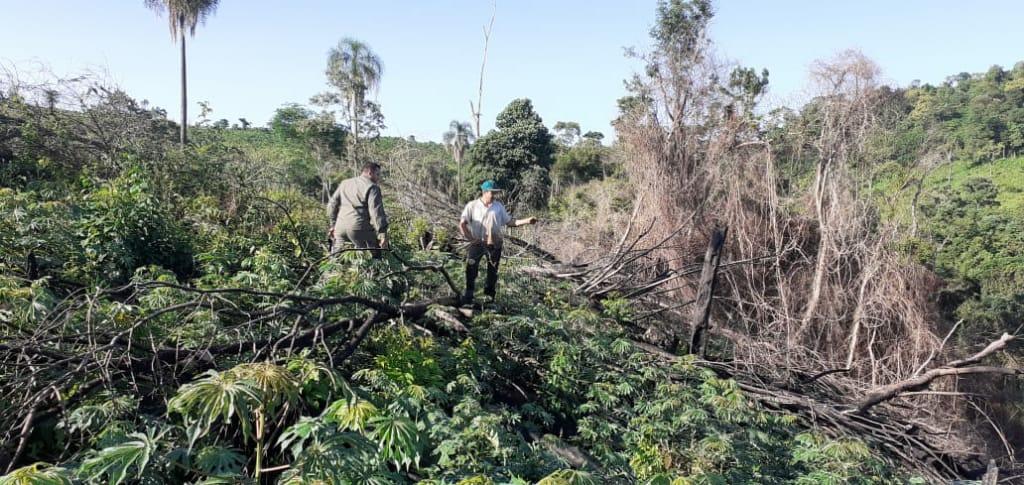 Inspectores de Control Forestal de Ecología detuvieron un rozado con quema ilegal en Pozo Azul