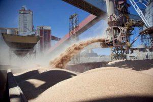 China mete presión en el mercado de la soja, ¿cuánto más durará?