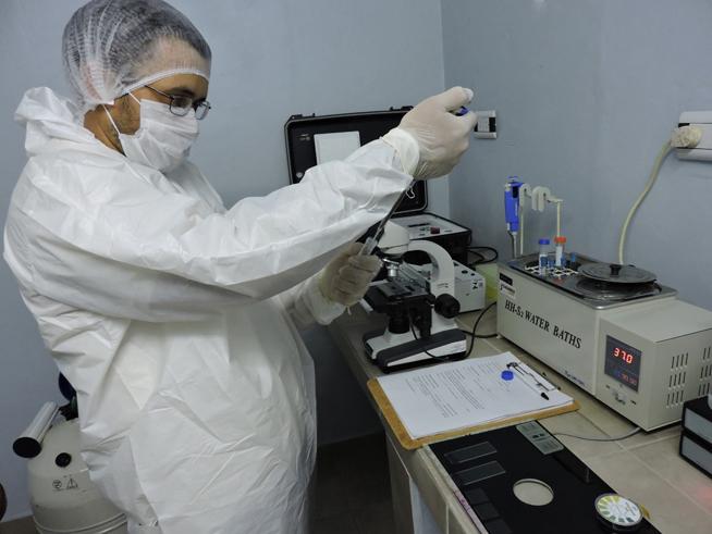 Con 350 proyectos y 140 grupos de investigación, la UNNE consolida su política científica