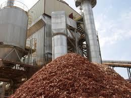 Búsquedas laborales: Planta de biomasa de Cerro Azul busca ingeniero y técnico operador