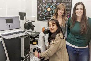 Andrea Vasconsuelo, Lorena Milanesi, Lucía Pronsato, investigadoras del Instituto de Ciencias Biológicas y Biomédicas del Sur, que depende de la Universidad Nacional del Sur y del CONICET.