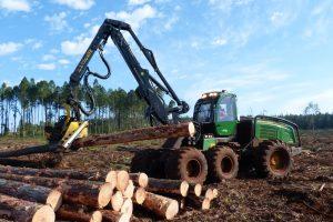Agricultura transfiere 19,2 millones a forestadores de Misiones