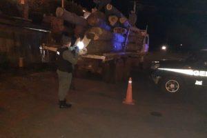 Retuvieron un camión con madera nativa sin aval de circulación